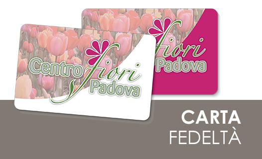 Centro fiori padova ingrosso articoli per fioristi for Libri per fioristi