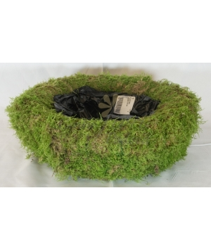 Planter moss