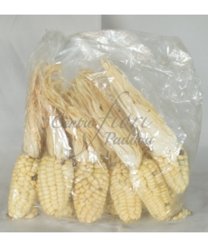 Zea Mays Medium