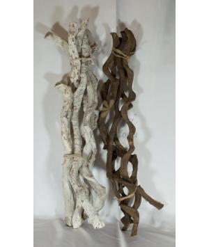 Rami legno contorti