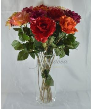 Rosa Aperta Luxory 12pz