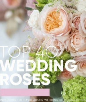 LIBRO TOP 40 WEDDING ROSES