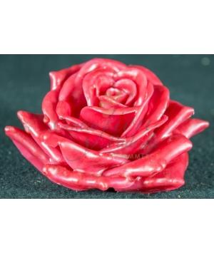 Wax Rose 12pz