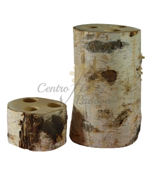 Betulla Tlight Birch Trunk