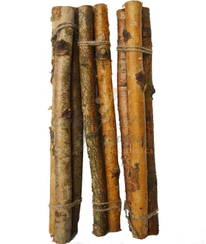BETULLA BIRCH TRUNK 3 PZ