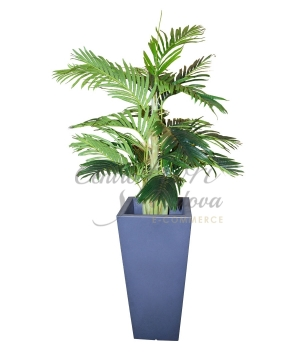 ARECA ARTIFICIALE