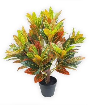 CROTON IN VASO ARTIFICIALE