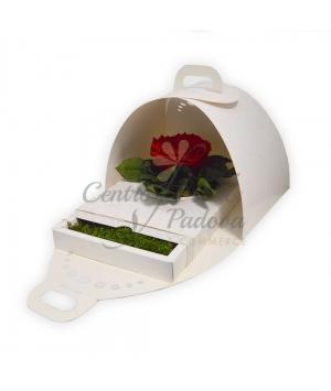 FLATMOSS ROSE WHITE BOX